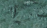 Marble - Verde Rajasthan